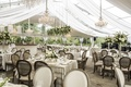 tent outdoor space chandeliers champagne hues wedding reception hanging greenery tan linens