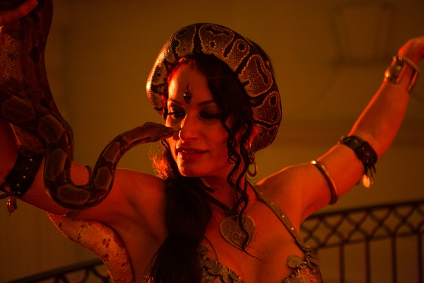 Belly dancer performs with snake at Moroccan-themed engagement party