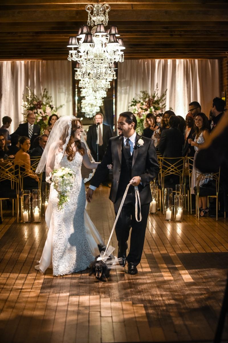 hector maldonado bassist from train in tommy hilfiger, bride in oscar de la renta, walk dachshund