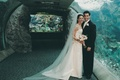 Bride and groom next to aquarium tank in Long Beach