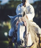 man horseback moroccan wedding marrakech traditional garb jewels customs white outfit