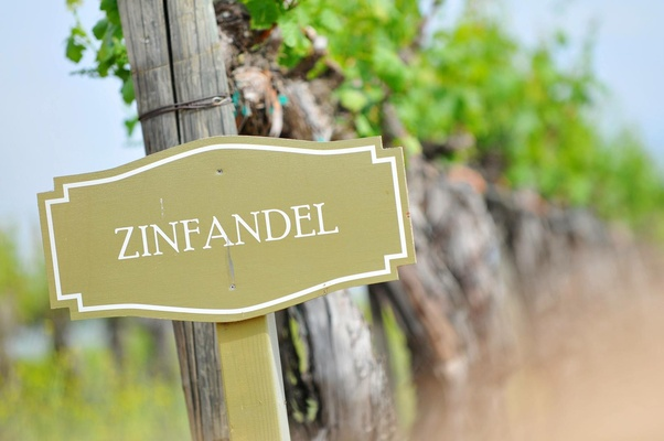 Wine vineyard signage for zinfandel grapes