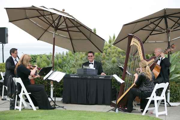 Harp violin base string piano instruments at wedding