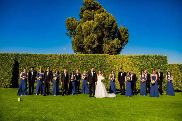 wedding party photo on grass lawn hedge wall tree blue skies navy blue dresses tuxedos for groomsmen