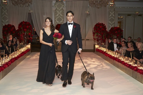 Bridesmaid in black, groomsman in tuxedo, walking pugs down aisle