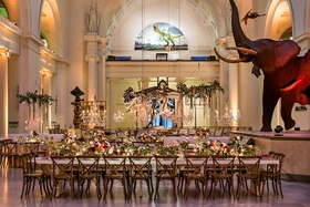 Wedding reception at The Field Museum in front of Sue the T Rex dinosaur and mammoth elephant