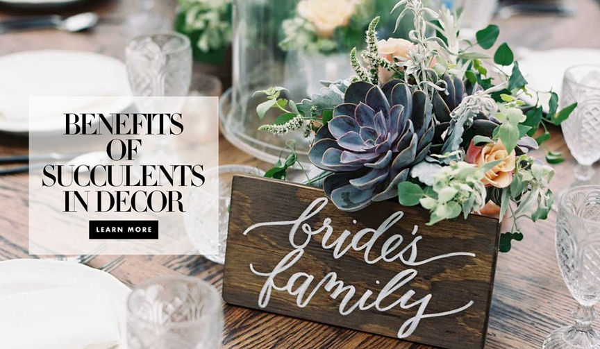 The benefits of including succulents in decor wedding ceremony and reception
