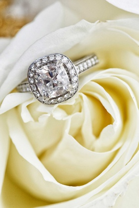 White rose holding diamond halo engagement ring cushion cut pave band setting