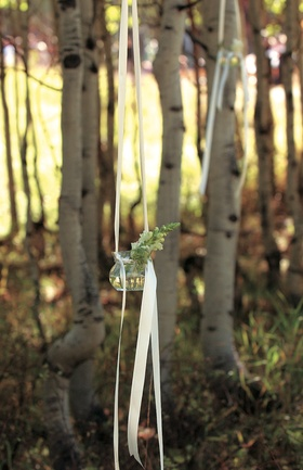 Flower vase hanging from tree in mountain woods