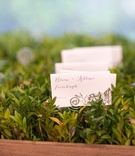 Planter box with greenery and escort cards leaf design hand drawn calligraphy
