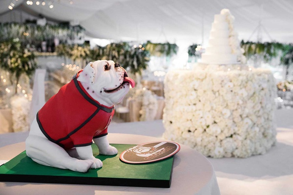 wedding cake stage on groom's cake bulldog mascot for university of georgia