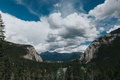 Banff National Park wedding, pine forest, mountain views