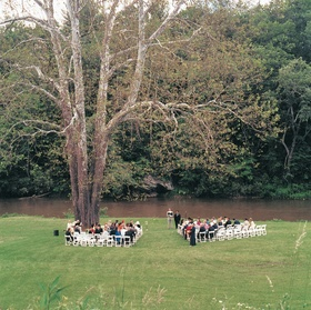Ceremony chairs under sycamore tree on grassy lawn