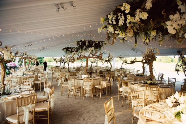 tented reception with twinkle lights, grapewood, greenery