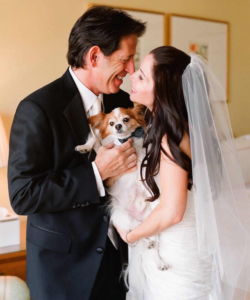 Dog in Wedding: 21 of Our Favorite Pet in Wedding Events - Inside ...