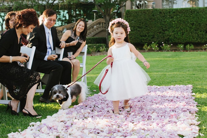Chinese flower girl walking dog down aisle