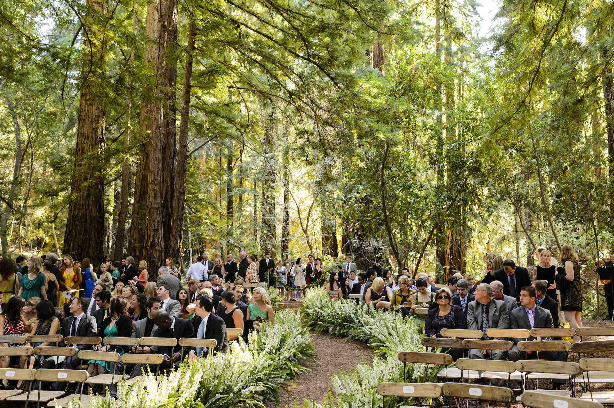 Rustic outdoor wedding ideas inside weddings forest wedding under large redwood trees junglespirit