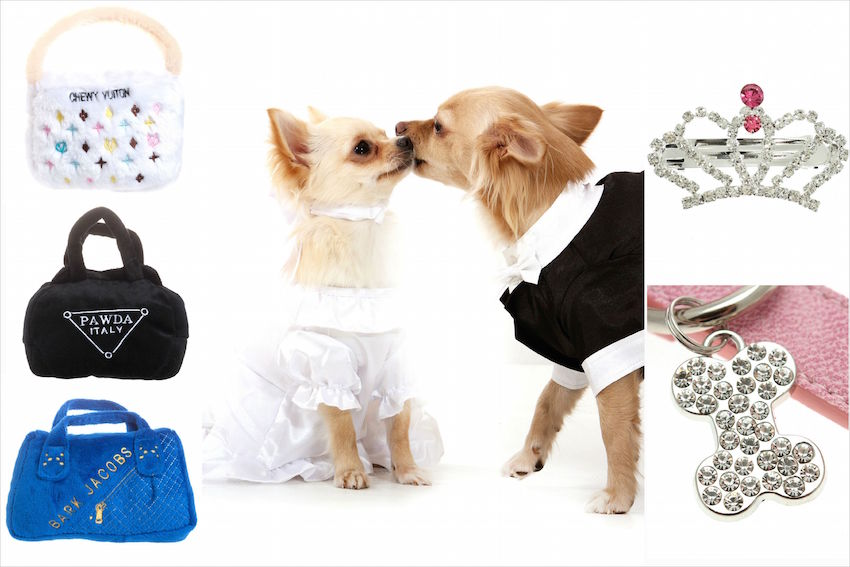Carrie underwood wedding pets in wedding