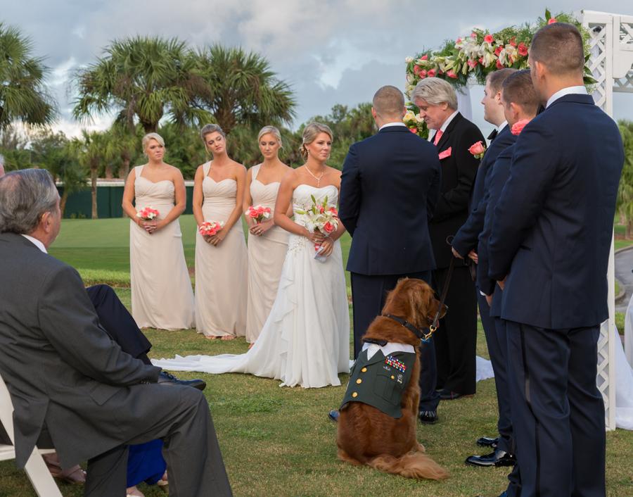 dog at altar