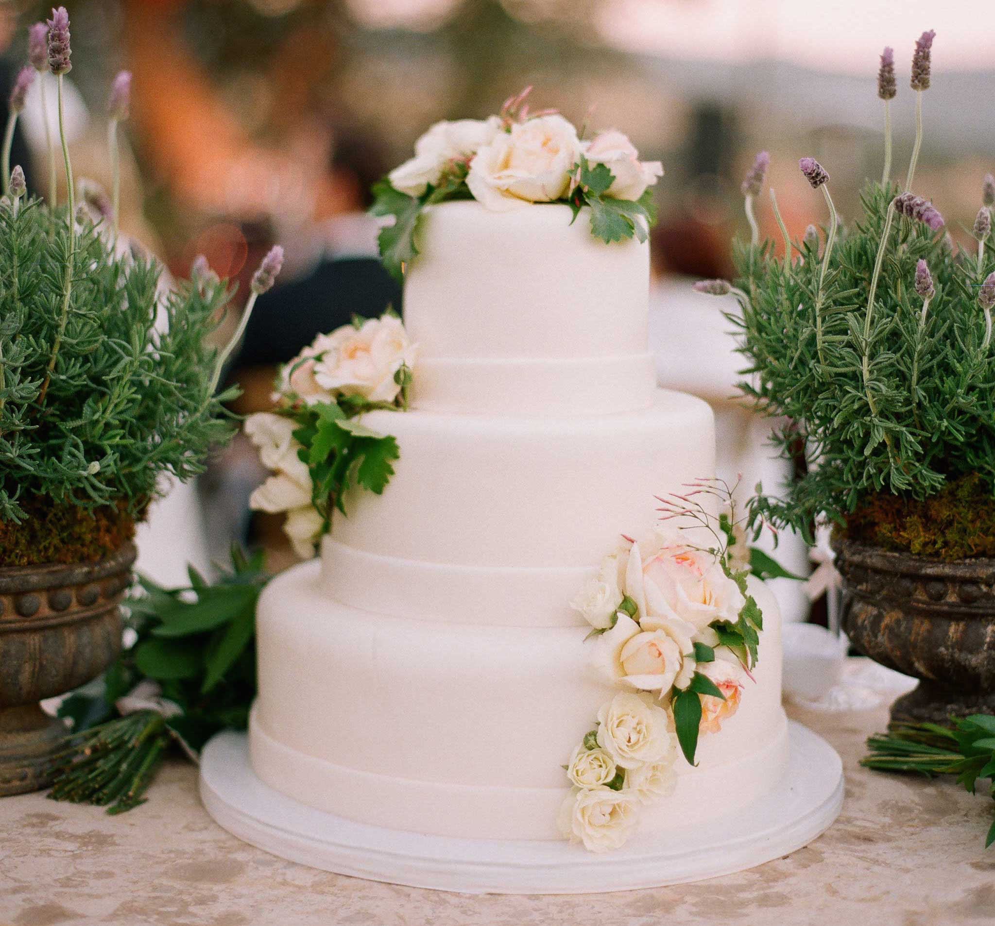 Simple white wedding cake Mark Paul Gosselaar