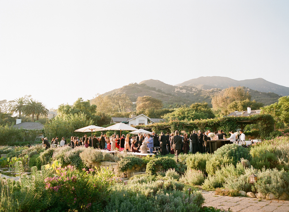Guests at outdoor wedding reception