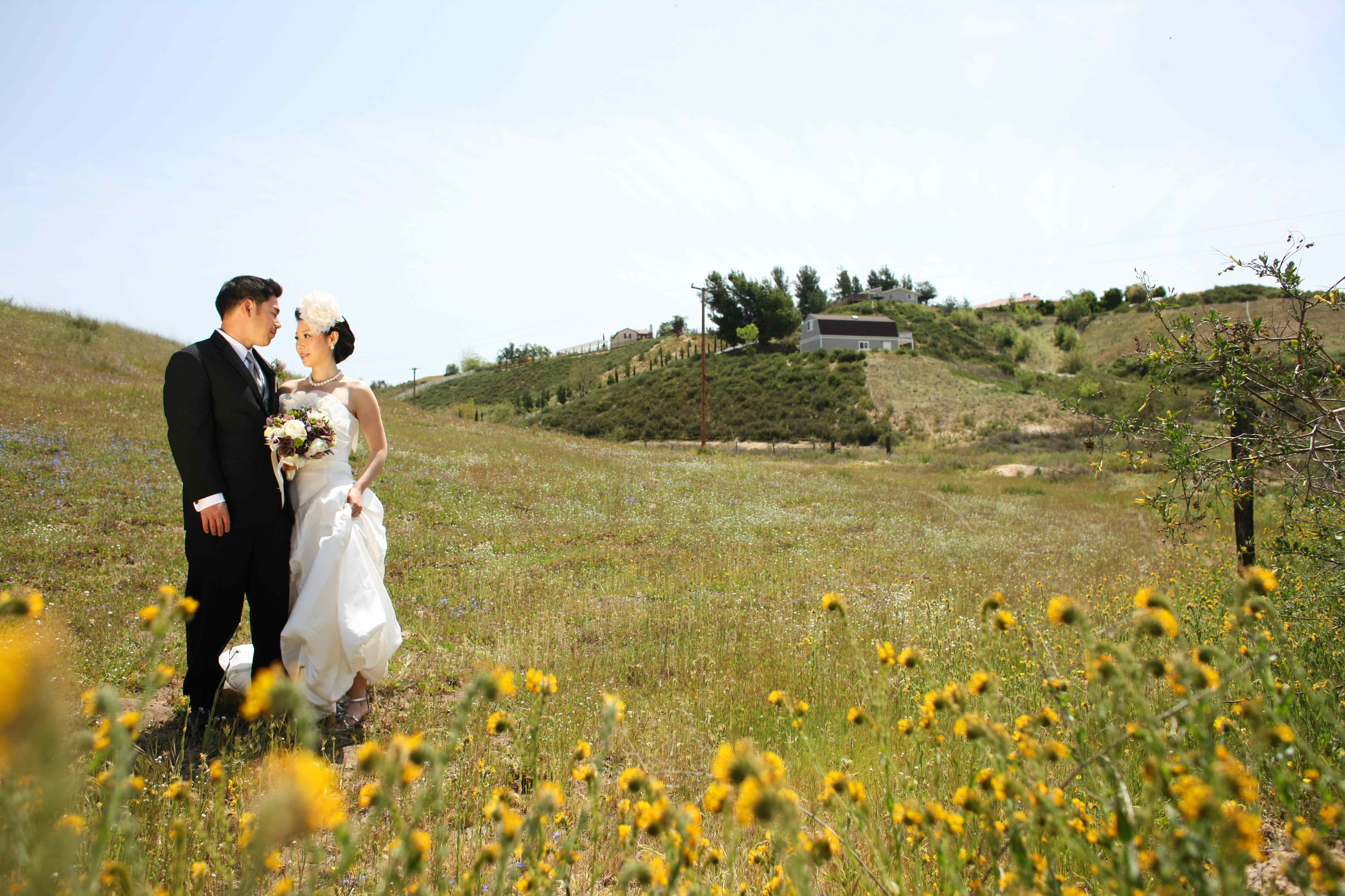 vineyard wedding, outdoor wedding