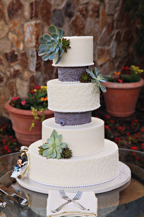 wedding cake with fresh succulent details