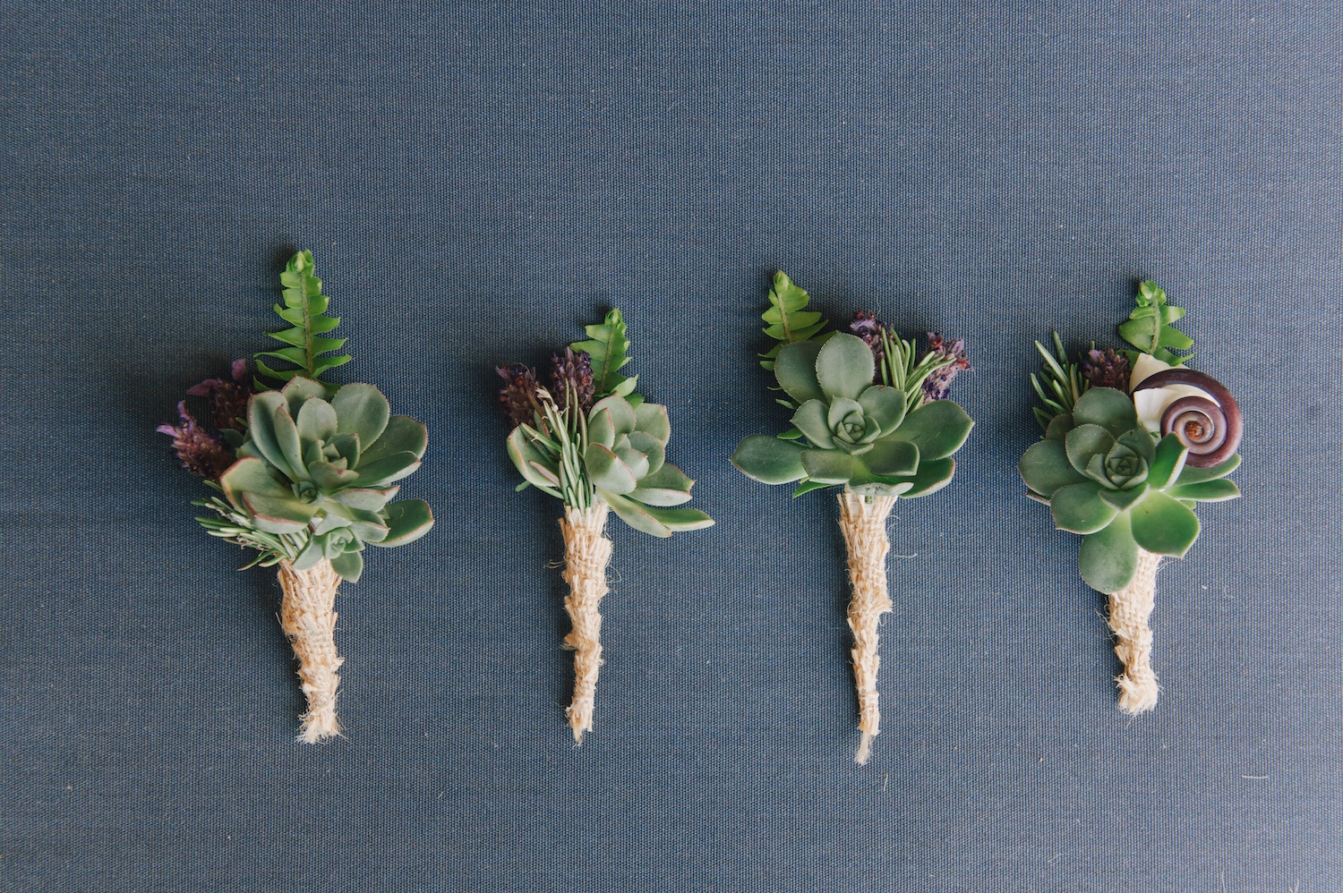 succulent boutonnieres for groom and groomsmen at wedding