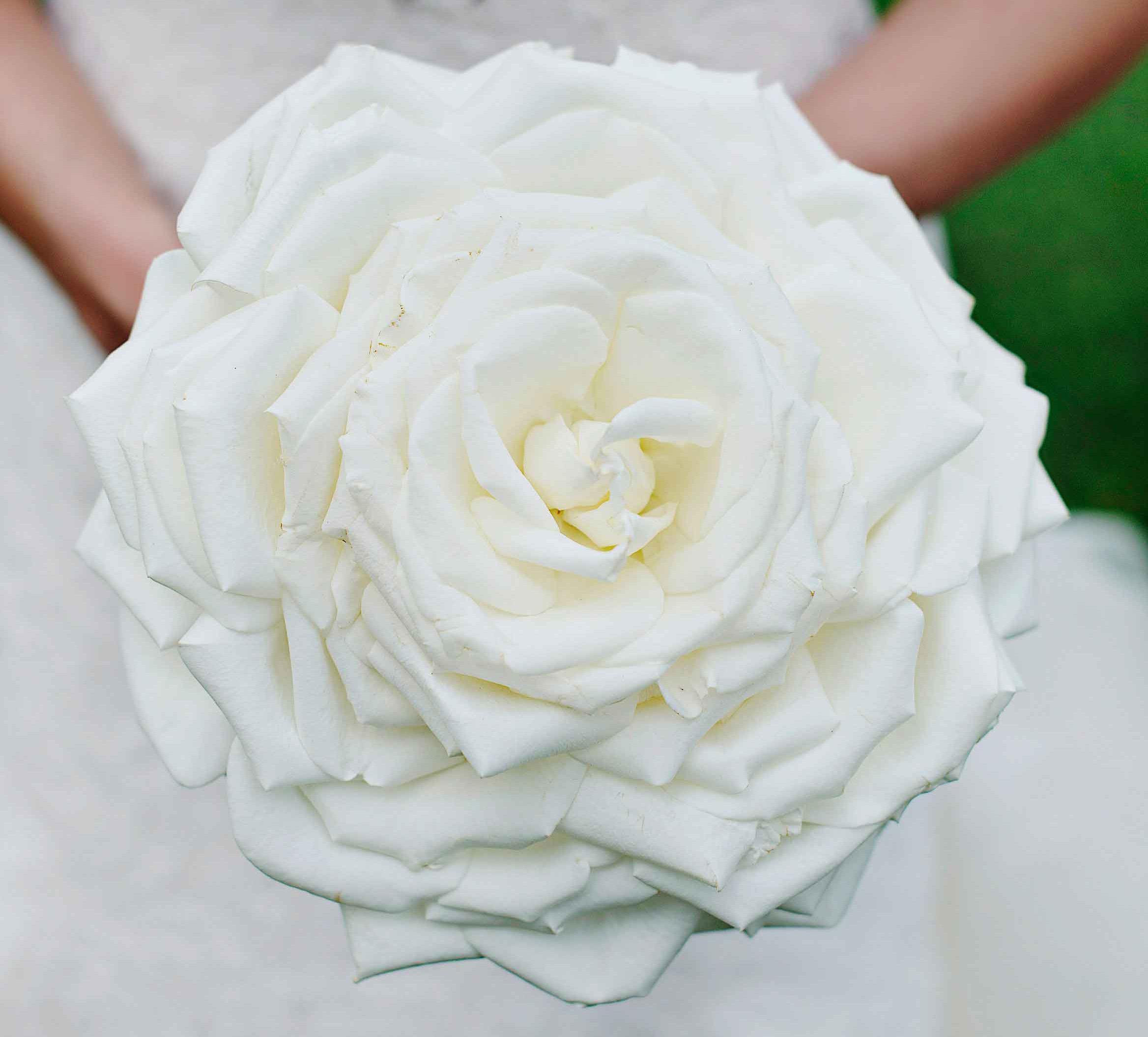 white bridal glamelia bouquet