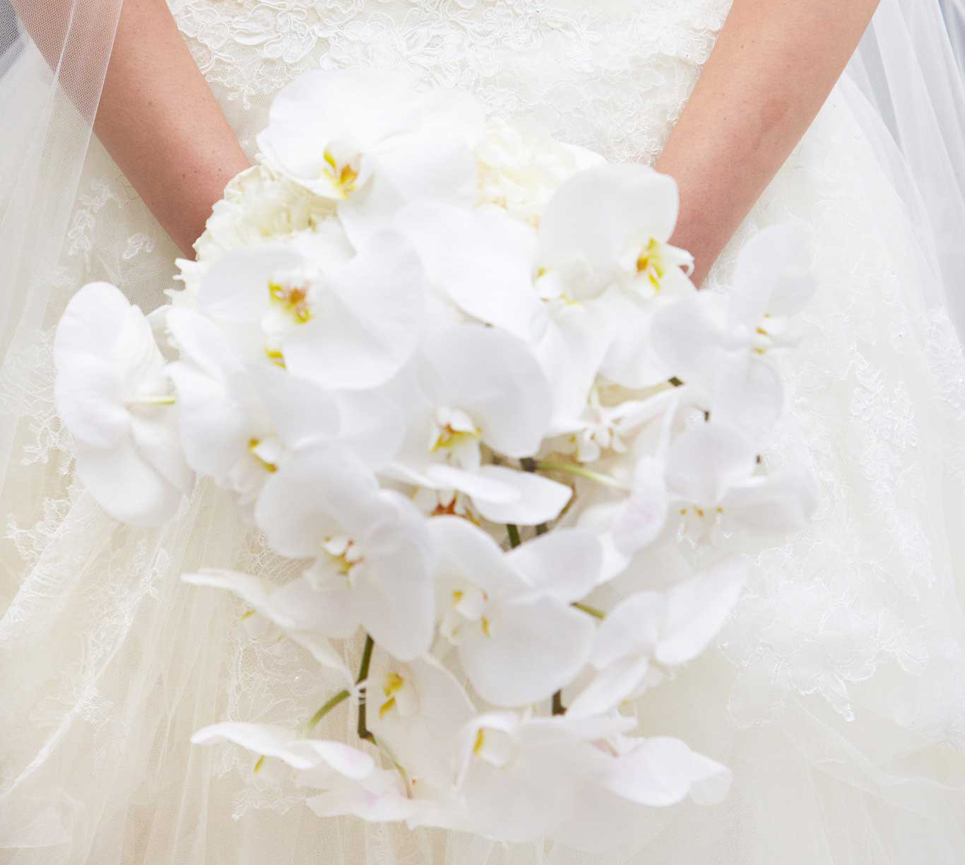 bridal bouquet with cascading white orchids