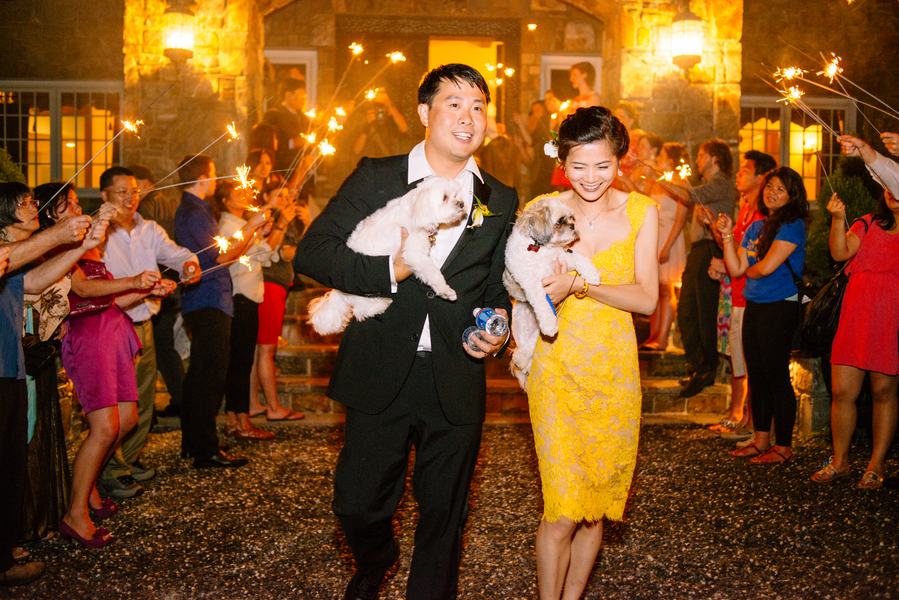 Bride and groom leaving reception with dog in arms sparkler exit