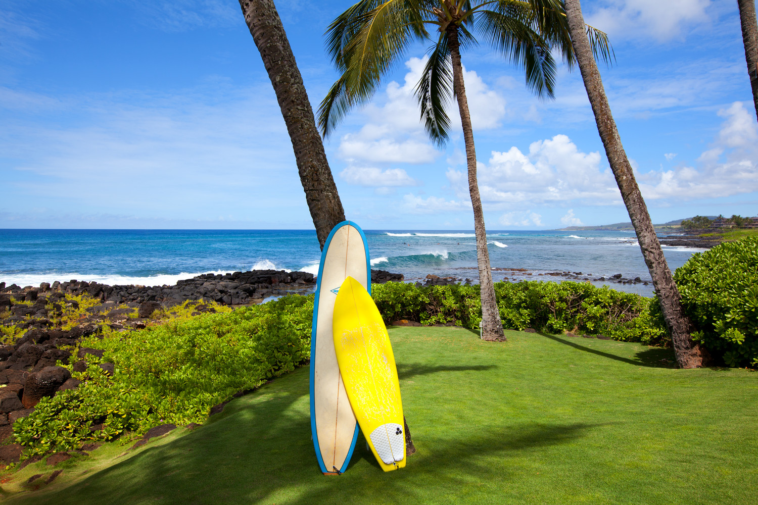 Surf boards and stand up paddle boards SUP paddleboards on lawn of Sheraton Kauai Resort