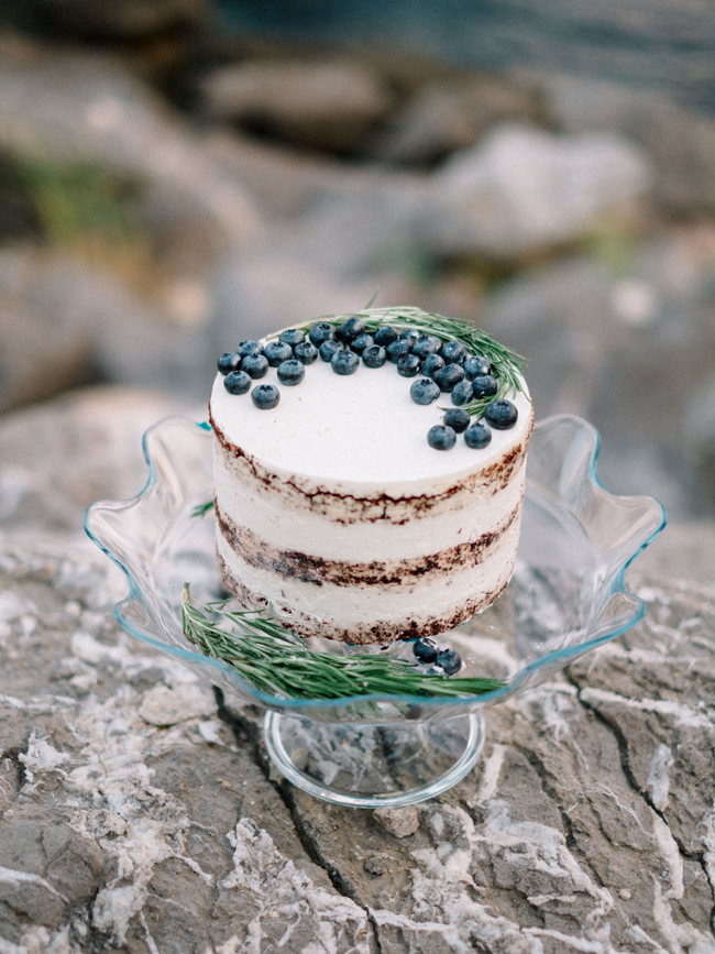 One layer naked cake with fresh blueberry and rosemary topping elopement