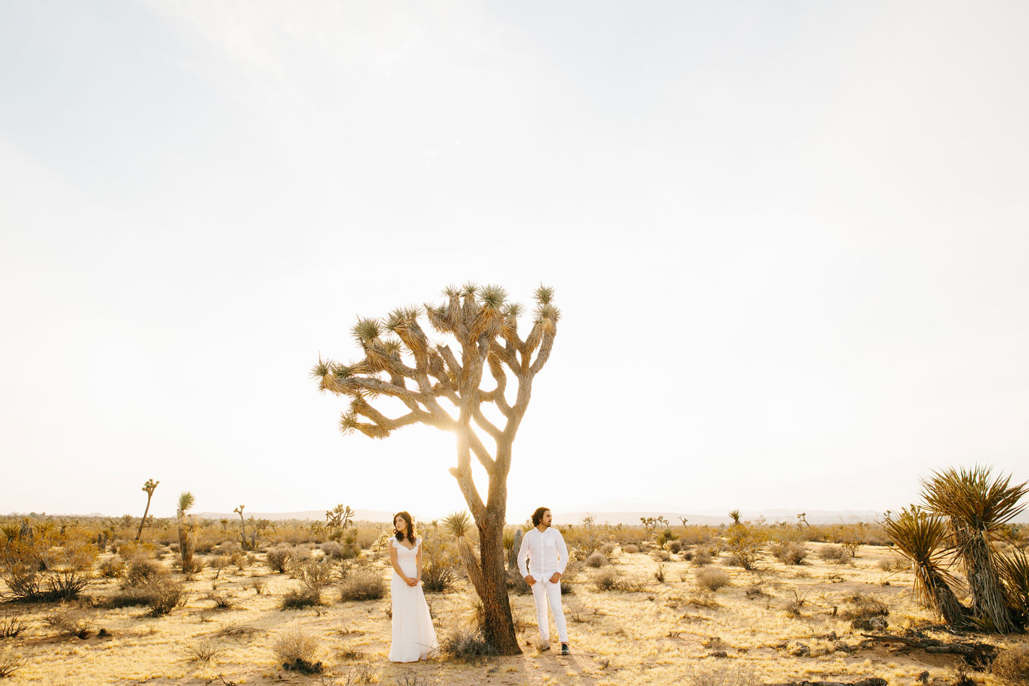 Bride and groom by Joshua Tree in Joshua Tree engagement shoot sunset engagement photos