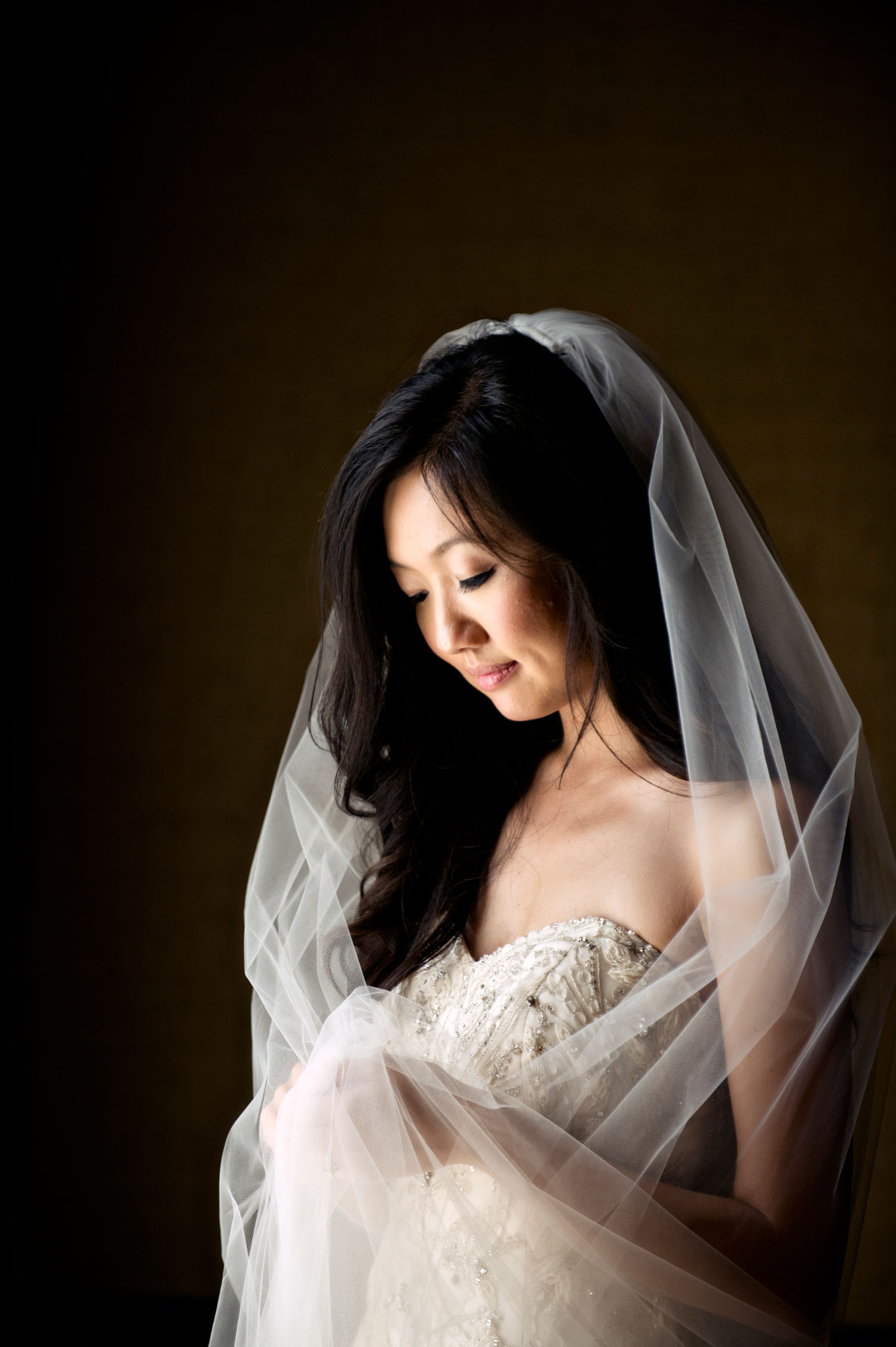Laurie Bailey Photography bridal portrait woman with strapless wedding dress and veil