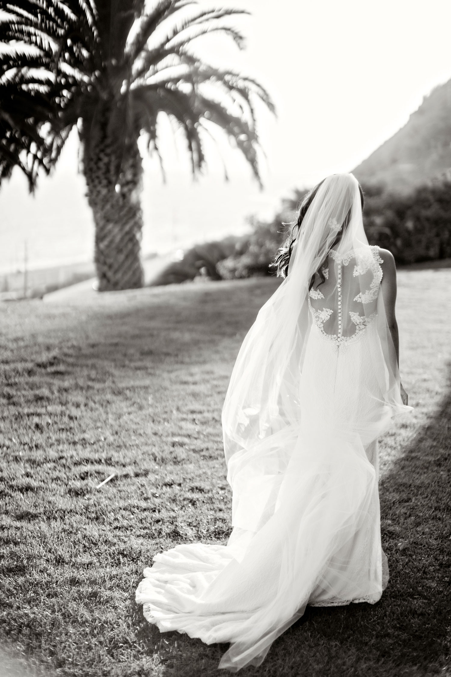 Laurie Bailey Photography black and white photo bridal portrait ideas back of bridal gown