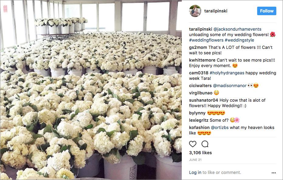 tara lipinski wedding, thousands of white hydrangeas for southern wedding