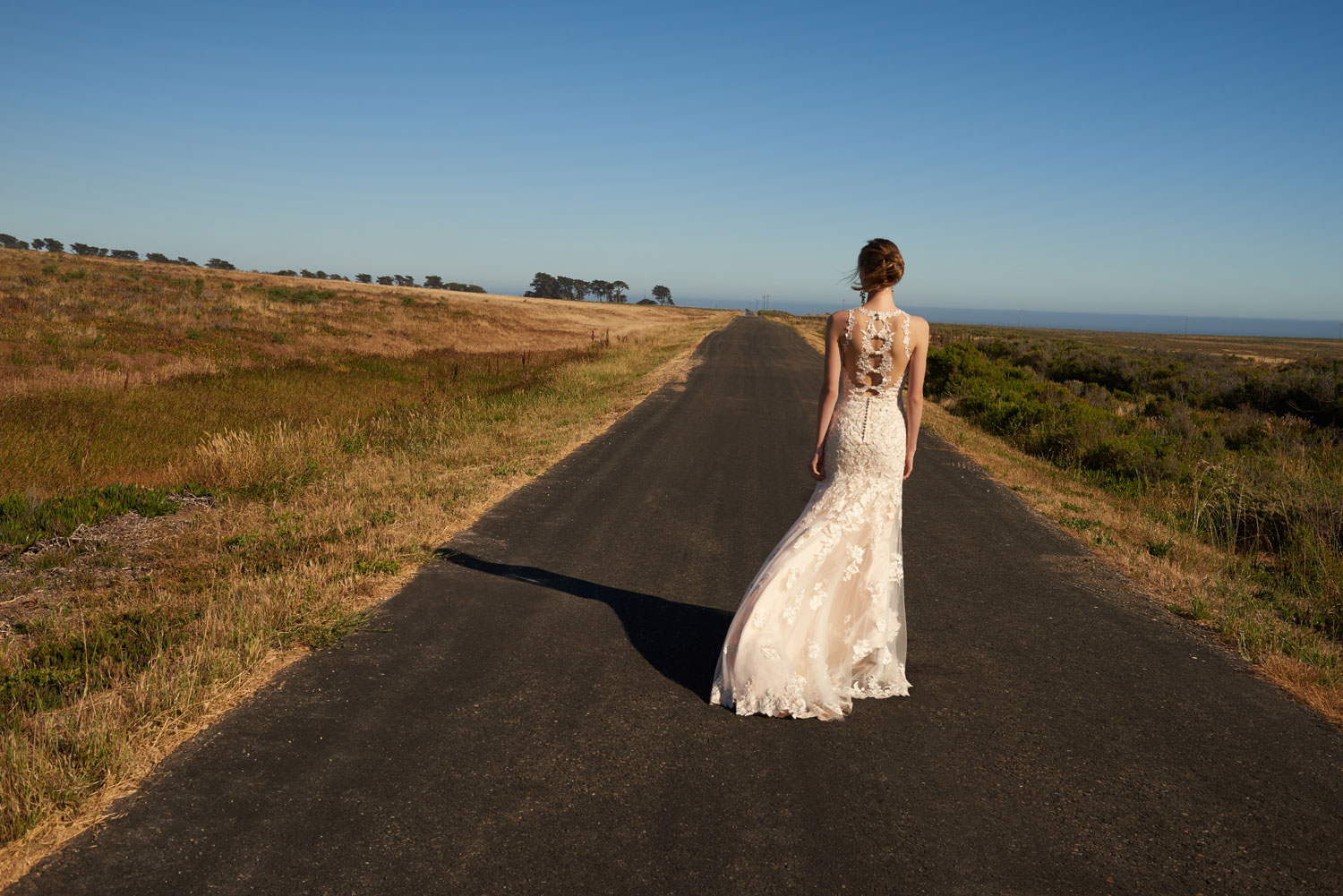 Back of wedding dress Emerson bhldn americana collection shop buy now