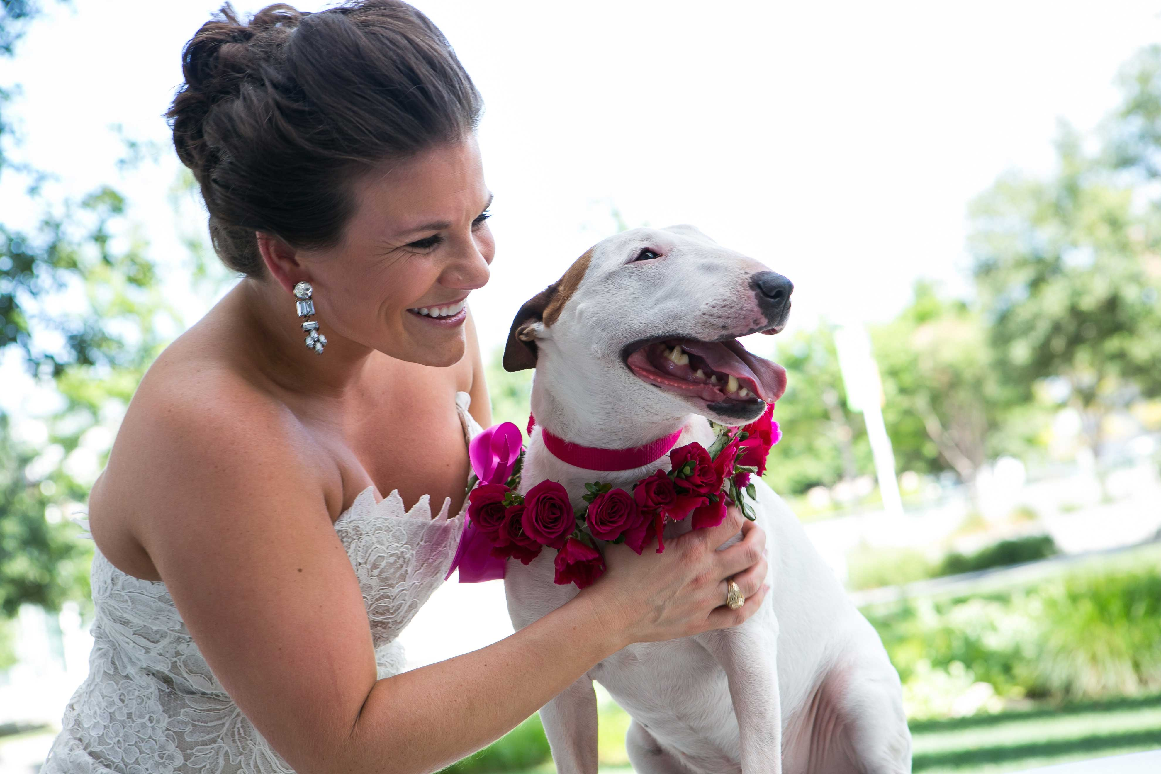 Bride with target dog with bright pink flowers on collar wedding