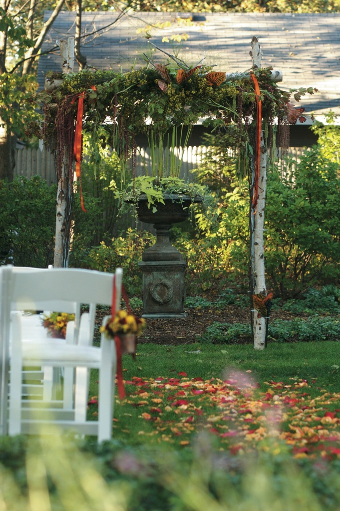 fall wedding arbor made from birch trees with greenery and leaves