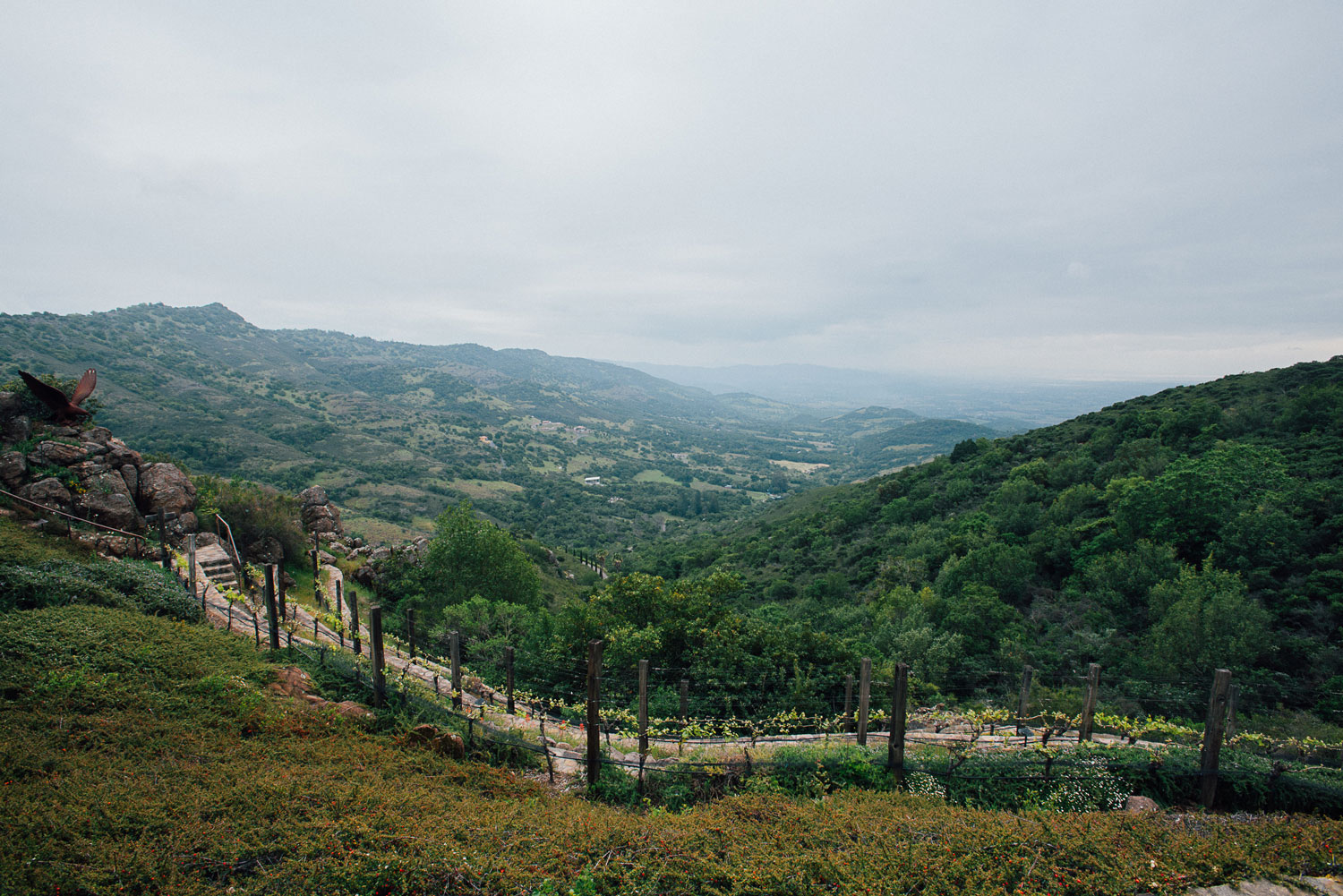 Napa Valley wine country wedding ideas proposal spot
