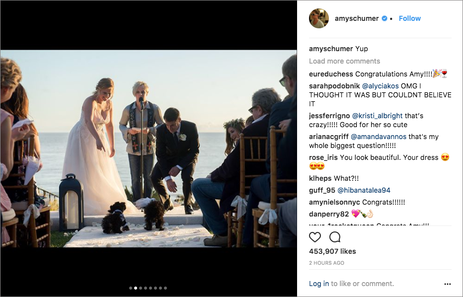 amy schumer chris fischer wedding in malibu , john early officiates as vicky