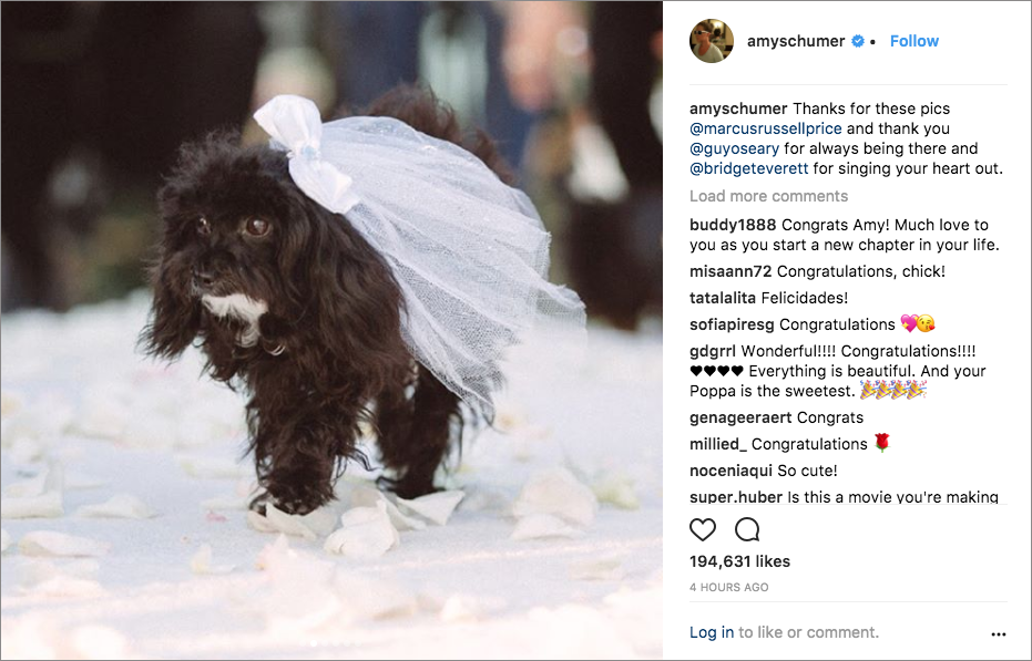 amy schumer chris fischer wedding in malibu, dog as ring bearer
