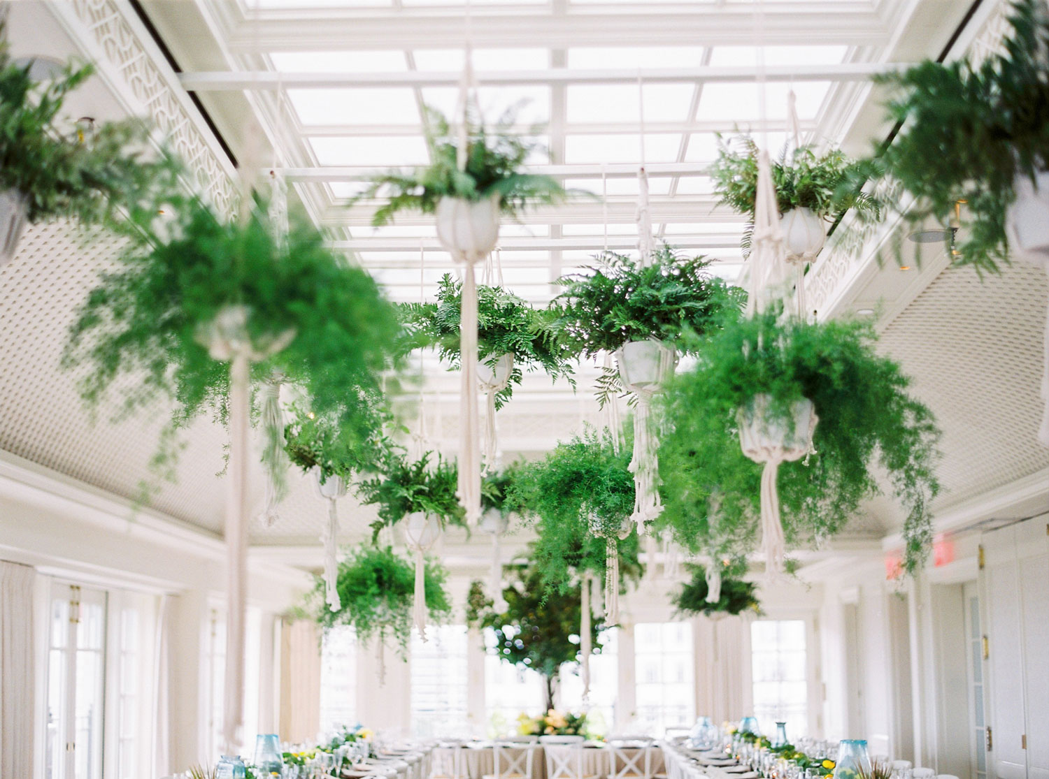 Ferns in macrame holders hanging from ceiling wedding reception ideas