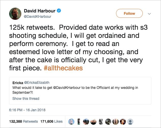 david harbour stranger things officiates fan's wedding