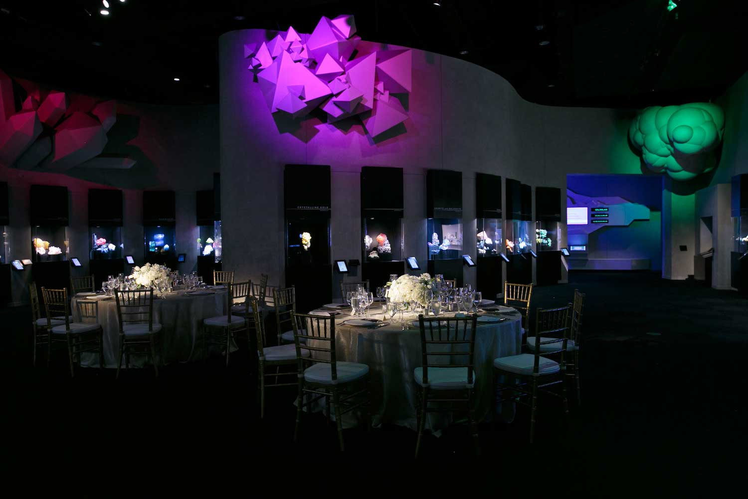 Perot Museum of Nature and Science Dallas Texas wedding reception dark lighting