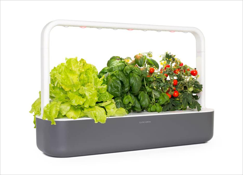 smart garden countertop herb garden holiday gift ideas
