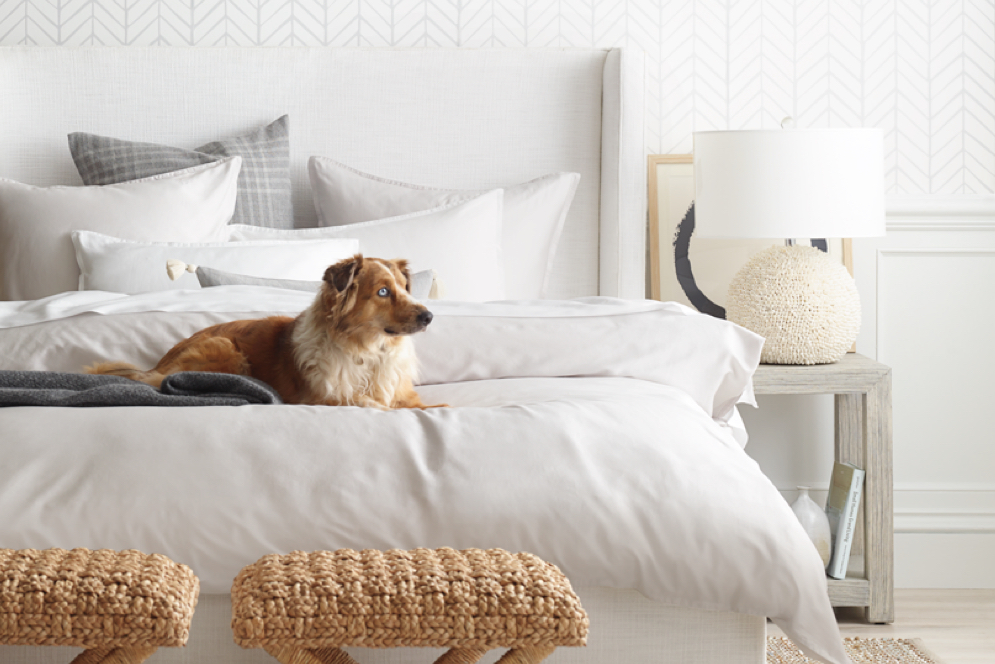 dog on top of neutral white bedding natural decor serena and lily bedroom sale spring refresh