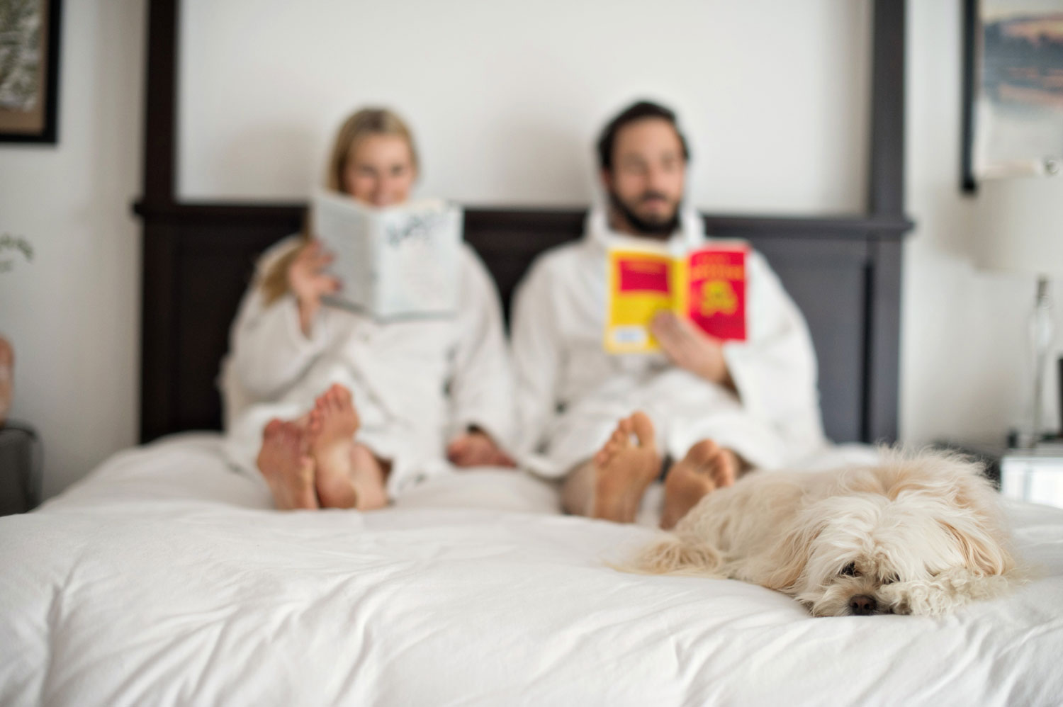 bride and groom reading with dog on bed engagement shoot bedroom ideas