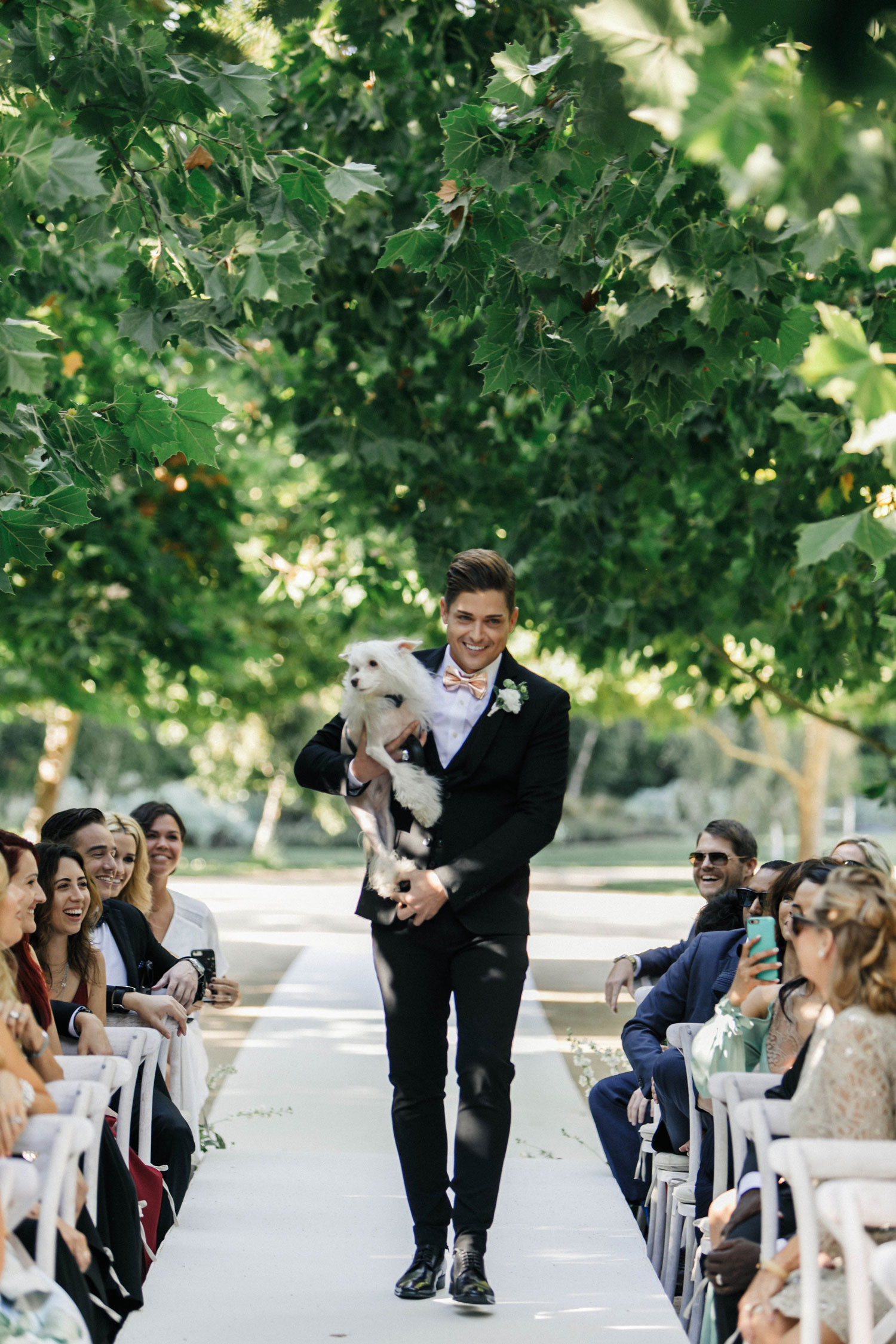 jillian murray and dean geyer wedding groomsman walking down aisle with dog
